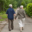 Elderly couple walking hand in hand — Stock Photo