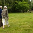 Older couple walking through a park — Stock Photo