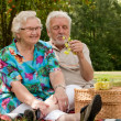 Senior couple picknicking in the park — Stock Photo #12676195