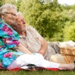 Elderly couple enjoying the spring — Stock Photo