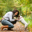 Playing with my Jack Russell — Stock Photo #12694860