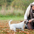 Playing with my dog in the autumn - Stock Photo