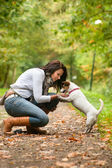 Playing with my Jack Russell — Stock Photo