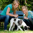 Two sisters and a dog — Stock Photo