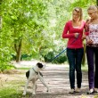 Walking with the dog — Stock Photo