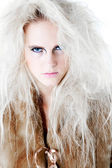 Wild angry fierce look in fur at you — Stock Photo