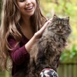 Girl and her cat - Stock fotografie