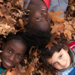Children and leafs — Stock Photo #17692607