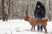 Emo 时髦男孩和他的狗 — 图库照片