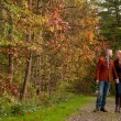 Happy couple is taking a walk in the forest — Stock Photo