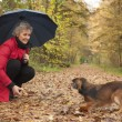 Stock Photo: Womwith umbrellplaying with her dog
