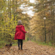Running with the dog in the forest — Stock Photo #41979253