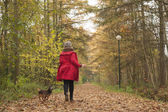 Running with the dog in the forest — Stock Photo