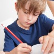 Young boy doing homework — Stock Photo #12440074