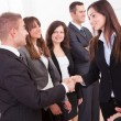 Stock Photo: BusinessmAnd BusinesswomShaking Hands