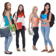 Four female students — Stock Photo