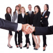 Stock Photo: Business mand womshaking hands