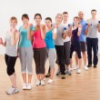 Aerobics class working out with dumbbells — Stock Photo #15335179