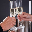 Romantic couple toasting each other — Stock Photo #17393069