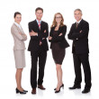 Successful business team — Stock Photo #18598119