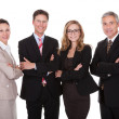 Group of business professionals — Stockfoto
