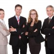 Group of business professionals - Stock Photo