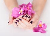 Vrouw met prachtig gemanicuurde nagels — Stockfoto