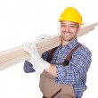 Portrait Of A Construction Worker — Stock Photo #19254739