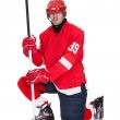 Portrait of professional hockey player — Stock Photo #19607863