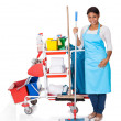 Female Cleaner With Cleaning Equipment - Stock Photo