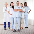 Stock Photo: Portrait of a happy successful group of doctors