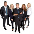 Diverse business group standing proudly on white — Stock Photo #20227845