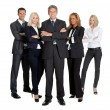 Stock Photo: Team of successful business on white