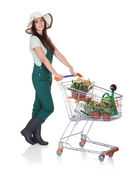 Smiling Attractive Woman Holding Shopping Cart — Stock Photo