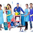 Foto Stock: Group of professional cleaners