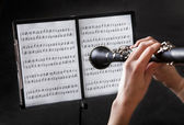 Beautiful young woman playing clarinet — Stock Photo