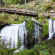 triberg waterfalls — Stock Photo