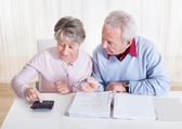 Senior Couple Calculating Budget — Stock Photo