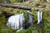 Triberg vattenfall — Stockfoto