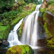 Stock Photo: Triberg Waterfalls