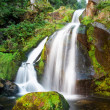 Triberg Waterfalls — Stock Photo #23527435