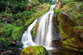 Triberg Waterfalls — Stock Photo