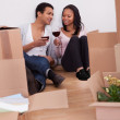Couple Unpacking Boxes And Drinking Wine — Stock Photo #25235927