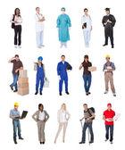 Trabalhadores profissionais, empresário, cozinheiros, médicos, — Foto Stock