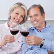 Portrait Of Mature Couple Toasting With Wine — Stock Photo #28608135