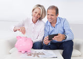 Mature Couple Calculating Coin In The Piggybank — Stock Photo