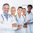 Group Of Happy Multiracial Doctors — Stock Photo #29748657