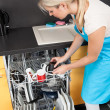 Woman Putting Dishes In The Dishwasher — Stock Photo