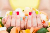 Flores de exploração de mão feminina — Fotografia Stock