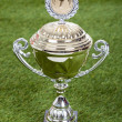 Shiny Championship Trophy On Pitch — Stock Photo